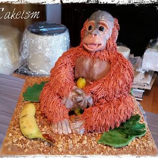 Mr Orangutan