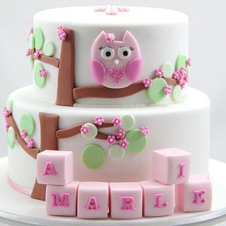 Pink Owl Christening - Cake by Jo Kavanagh