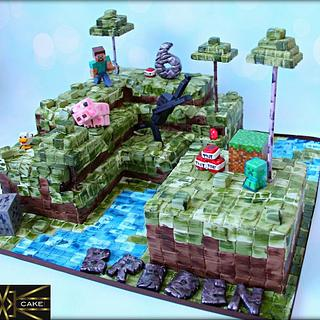 "16""x16"" MineCraft Cake!"