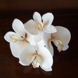 Orchid - sugar flower - Cake by Federica Sampò