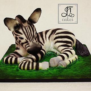 Carved Cake Baby Zebra - Cake by JT Cakes