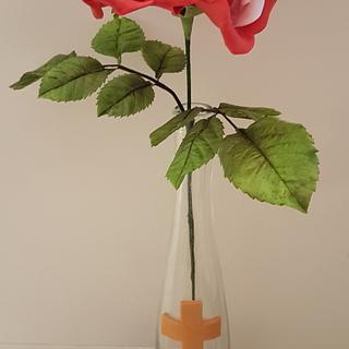Swiss Style Rose