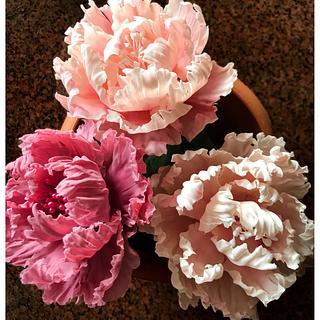 Flower paste Peonies
