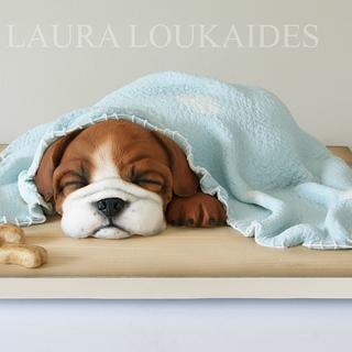 Benson the Sleepy Bulldog