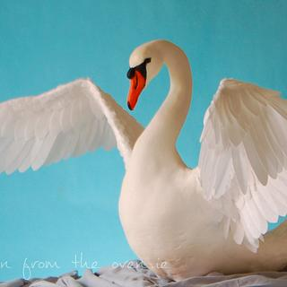 Lifesize Swan - Away With the Fairies