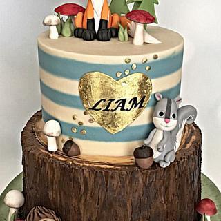 Baby Liam's woodland cake