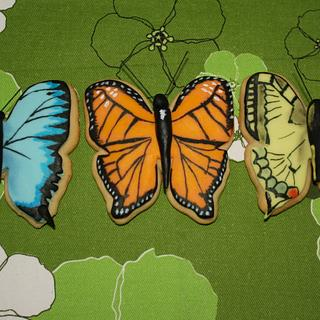 Butterflies hand painted cookies - Cake by JT Cakes