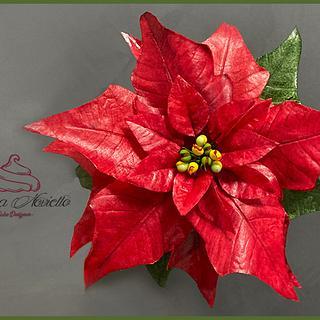 Poinsettia Edible Wafer Paper