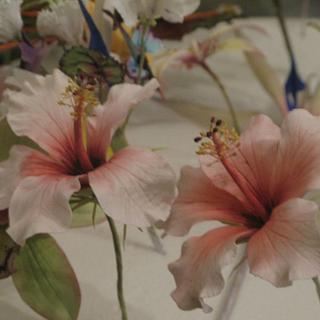 hibiscus and cymbidium orchid - Cake by Cristiana Ginanni