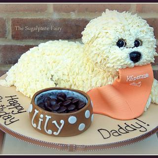 Maltese puppy cake