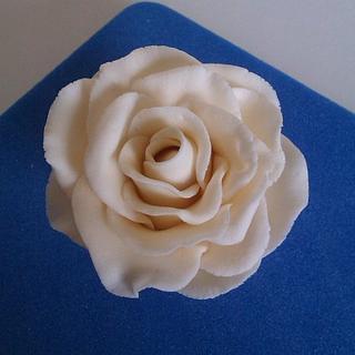 Roses - Cake by fiestykax