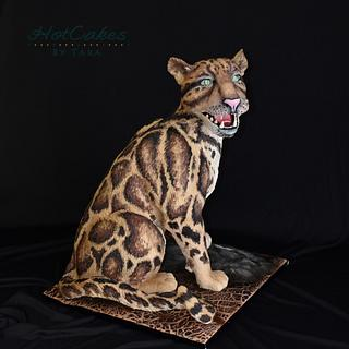 Clouded Leopard- Cake this again Collab