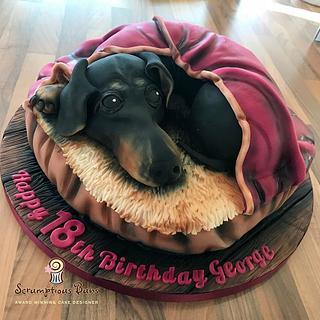 Dachshund Cake