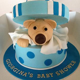 Bear in box baby shower cake