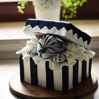 Gift box cake with a cute kitty