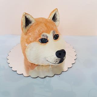 Akita dog cake