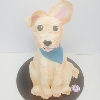 Figo Doggy cake