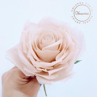 Rosa en pasta de arroz - Ricepaste Rose - Cake by Yolanda Cueto - Yocuna Floral Artist