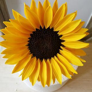 Gum paste Sunflower
