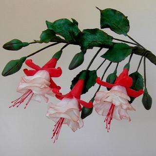 Frilly Fuchsia