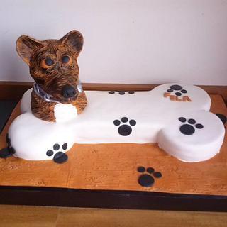 Portuguese Dog Fila S. Miguel
