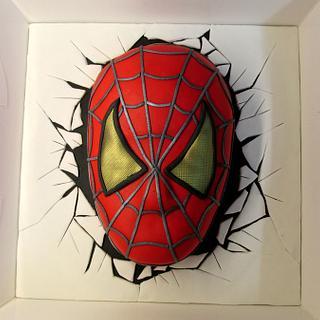 Spiderman Surprise