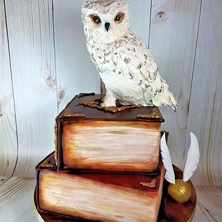 Harry Potter Owl/Book Cake