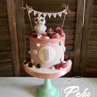 Owl - Cake by Petra Krátká (Petu Cakes)
