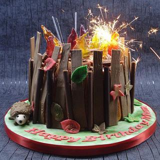 Bonfire cake