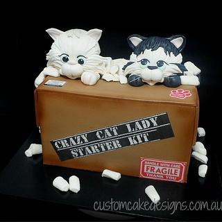 Miraculous Crazy Cat Lady 10 Cakes Cakesdecor Funny Birthday Cards Online Elaedamsfinfo