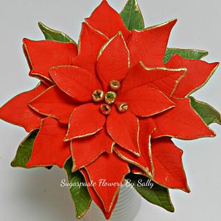 Gold edged, red Poinsettia. - Cake by SallyMack