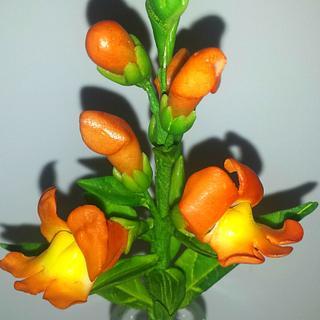 Gumpaste Snapdragon flower