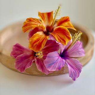 Vibrant colours - Cake by Agnes Havan-tortadecor.hu