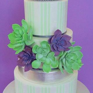 Succulent Wedding Cake - Cake by Eleanor Heaphy