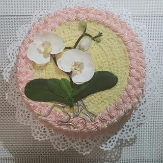 Moth orchid cake