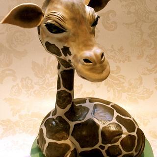 my baby giraffe