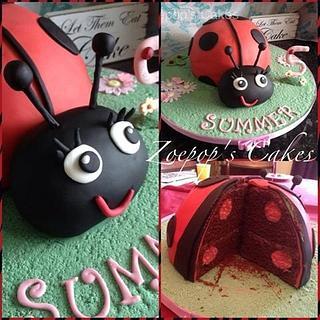 Spotty Dotty inside and out ladybird cake.