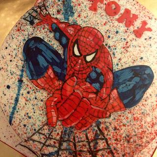 Hand Painted Spider-man