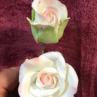 Rosas en pasta de goma