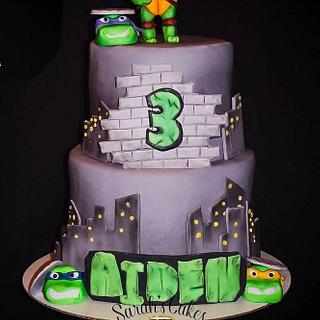 teenage mutant ninja turtle birthday cake