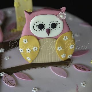 owls 1st birthday
