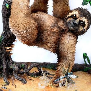Shredded Wheat Swamp Sloth
