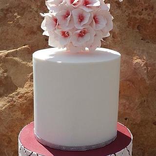 Dove wedding cake, love birds