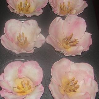 Gum paste Briar Rose