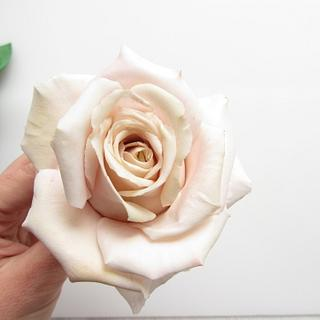 Mother of pearl rose