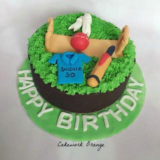 Cricket theme cake  - Cake by Gayathri Vijayakumar