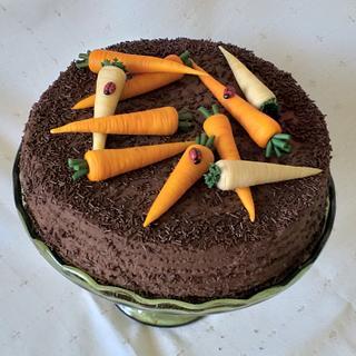 Chocolate and marzipan cake