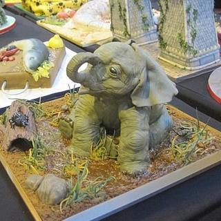 GOLD Award at CI 2013 Baby Elephant