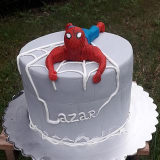 Spiderman cake - Cake by Torte Panda