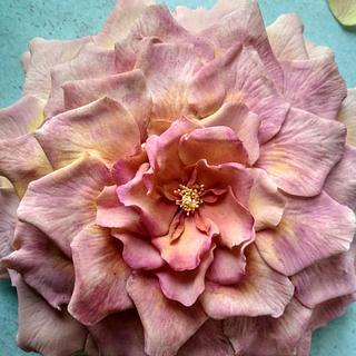 Open Rose cake inspired by Ron Ben Israel's rose cake